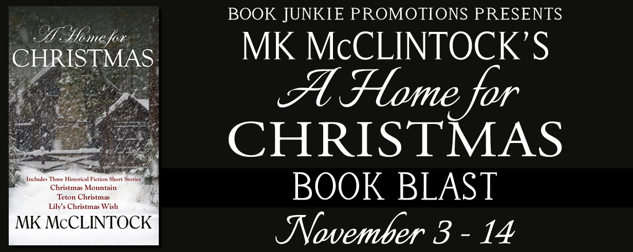 A Home for Christmas Book Blast