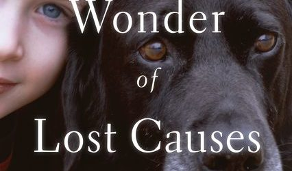 The-Wonder-of-Lost-Causes-cover