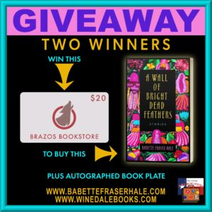 Giveaway A Wall of Bright Dead Feathers